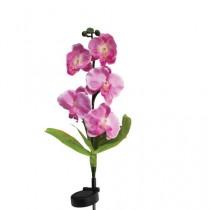 """Газонный светильник на солнечной батарее Feron """"Розовая орхидея"""", 5LED, белый, 70 см, PL301"""